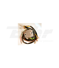 BMW 1000 R100CS 80-84 REGULADOR ELECTROSPORT
