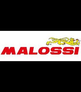 ACEITE MALOSSI SX 4T SPORT (SAE 15W-50)