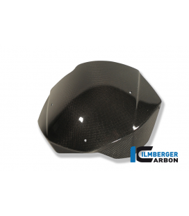 WINDSHIELD CARBON - BMW F 800 R (2009-2014)