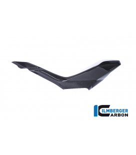 UNDERSEAT SIDE PANEL IZQUIERDA BRILLO CARBON - DUCATI SUPERSPORT 939