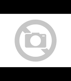 KIT TOP HONDA CBR 600   01