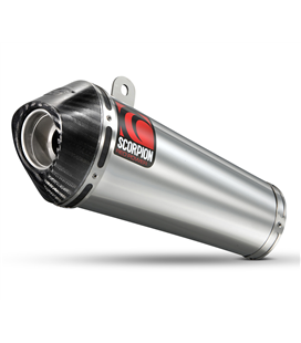 SUZUKI SFV GLADIUS 650 (09-) POWER CONE CARBONO/INOX