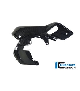 AIRTUBE RIGHT (UPPER WATERCOOLER COVER) CARBON - BMW R 1200 GS (LC FROM 2013)