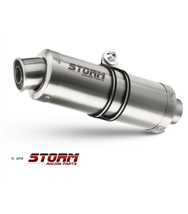 HONDA CBR 600 FS 2001 - 2003 ESCAPE STORM GP INOX