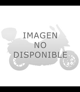 HONDA PANTHEON 125-150 98-02 CUPULA GIVI