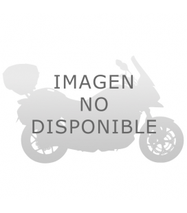 HONDA FORESIGHT 250 97-08 CUPULA GIVI