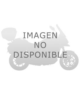 PEUGEOT SV 250 02 CUPULA GIVI