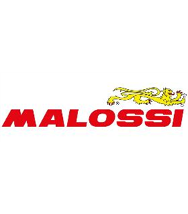 ACEITE MALOSSI RX RACING 4T (SAE 5W-40)