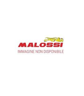 ESCAPE MALOSSI MAXI WILD LION YAMAHA T-MAX 530