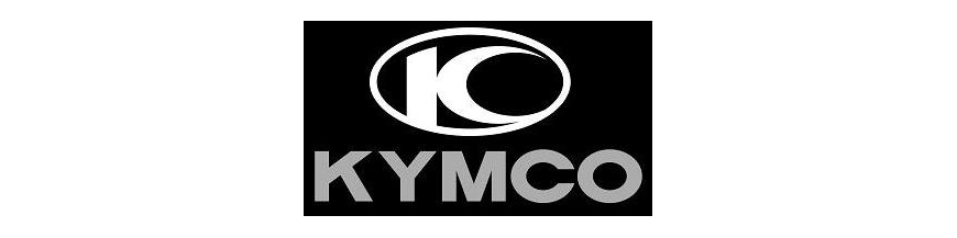 INTERMITENTES KYMCO