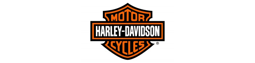 HARLEY MOTORES ARRANQUE