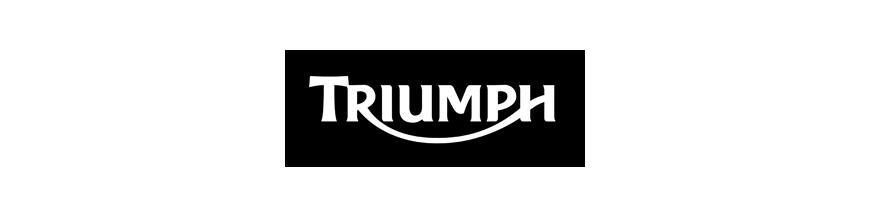 TRIUMPH AMORTIGUADORES