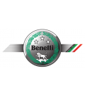 BENELLI ESCAPES STORM