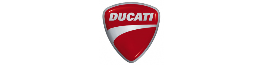 DUCATI ESCAPES STORM