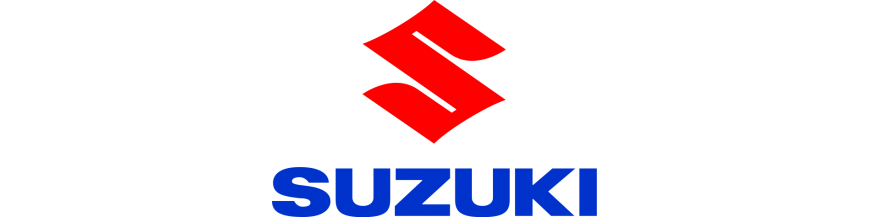 SUZUKI ESCAPES STORM