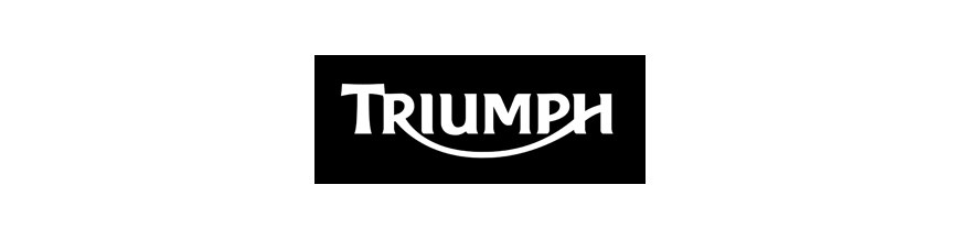 TRIUMPH ESCAPES STORM