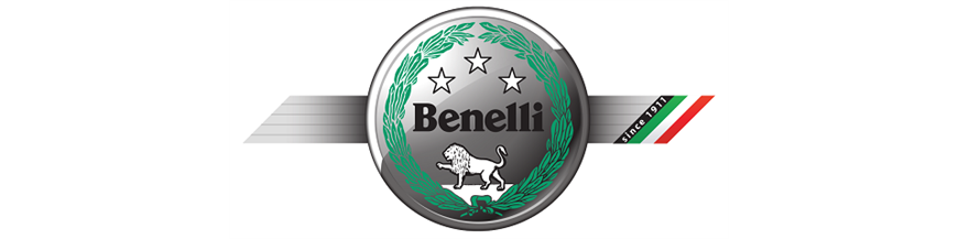 BENELLI ANCLAJES BAUL SHAD