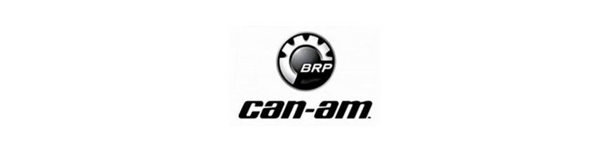 CAN-AM RODAMIENTOS TRASEROS