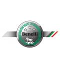 BENELLI DISCOS BREMBO FLOTANTES