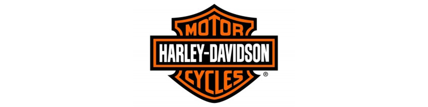 HARLEY DAVIDSON RACING
