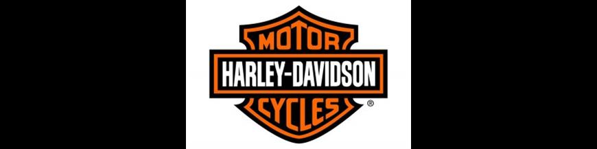 HARLEY DAVIDSON ENDURO
