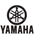 YAMAHA DR PULLEY