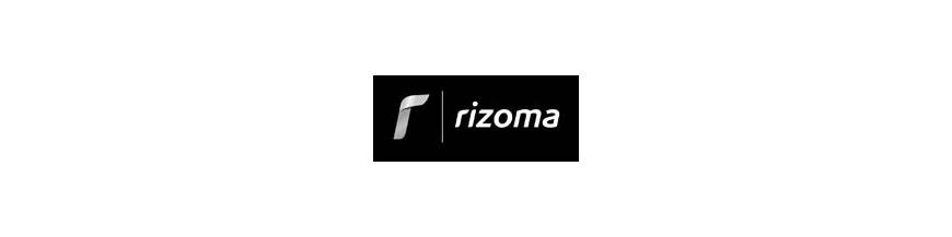 INTERMITENTES RIZOMA
