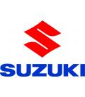 Cúpulas Suzuki