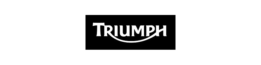 TRIUMPH HI TECH PUIG