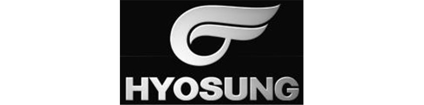 HYOSUNG RS1 PUIG