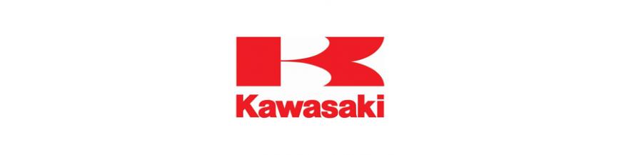 Cupulas Kawasaki
