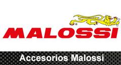 Accesorios Malossi